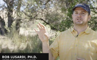 UC Davis Conservation Biologist Talks Salmonid Survival in the Klamath