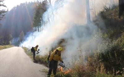 Bringing Healthy Fire Back to the Landscape