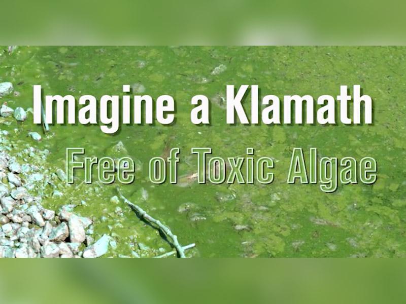 It's Time to Detox the Klamath!