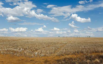 Drought Emergency Faces the Klamath