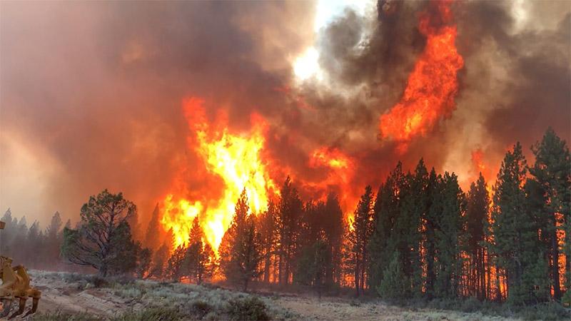 Bootleg fire- Lake Oswego Fire Department